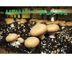 پرلیت در پرورش قارچ perlite
