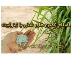 زئولیت در کشاورزی