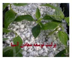 پرلیت برای نشا گیاهان و قلمه زنی
