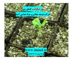کاربرد ورمیکولیت در کشاورزی
