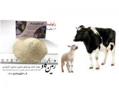اثر زئولیت در شکمبه نوشخوارکنندگان (Zeolite)