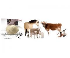 اثرات زئولیت در تغذیه نوشخوارکنندگان (Zeolite)