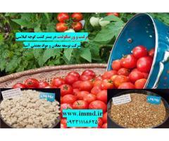 کاربرد ورمیکولیت و پرلیت در بستر کشت گوجه گیلاسی