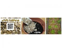 ورمیکولیت توسعه معادن آسیا  در کشاورزی و باغبانی